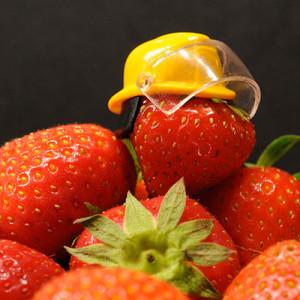 Haccp And Food Management Qualichemqualichem